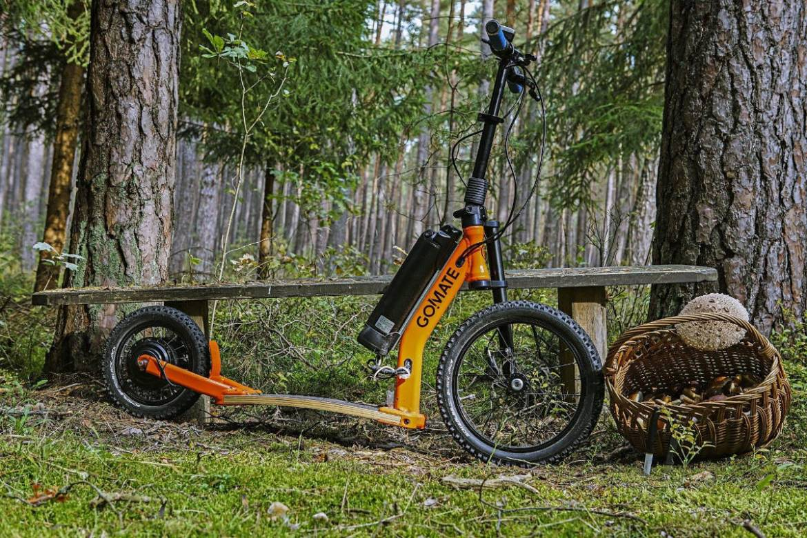 scooter-escooter-gomate-natur.jpg