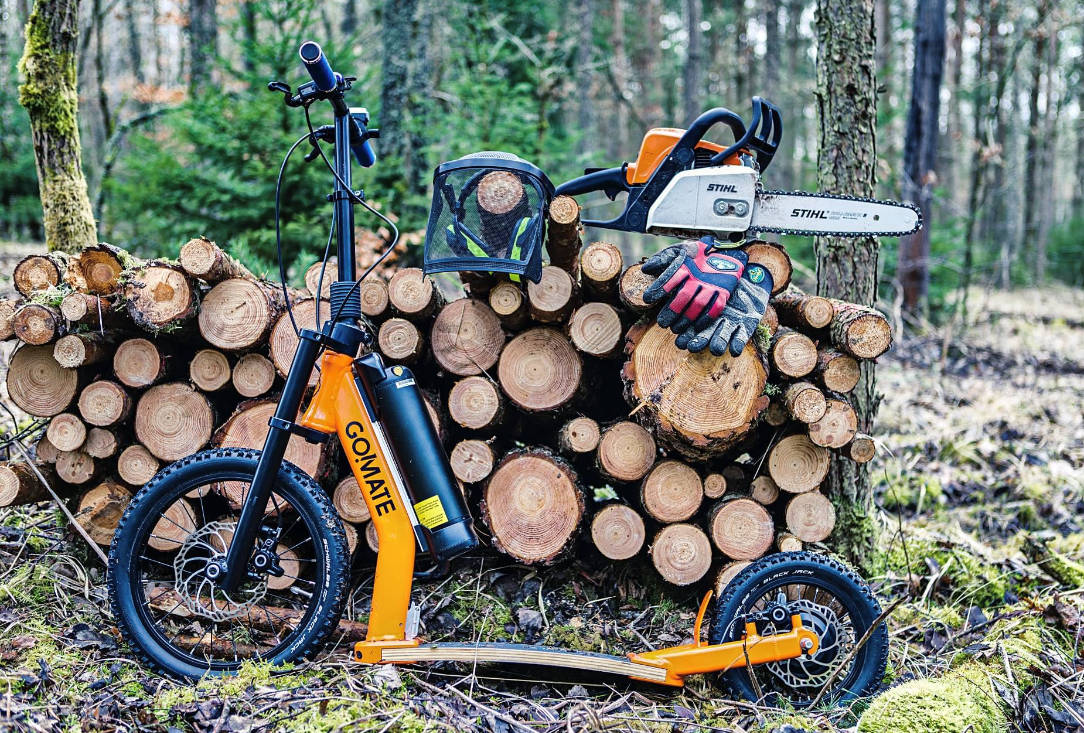 scooter-escooter-gomate-wald.jpg